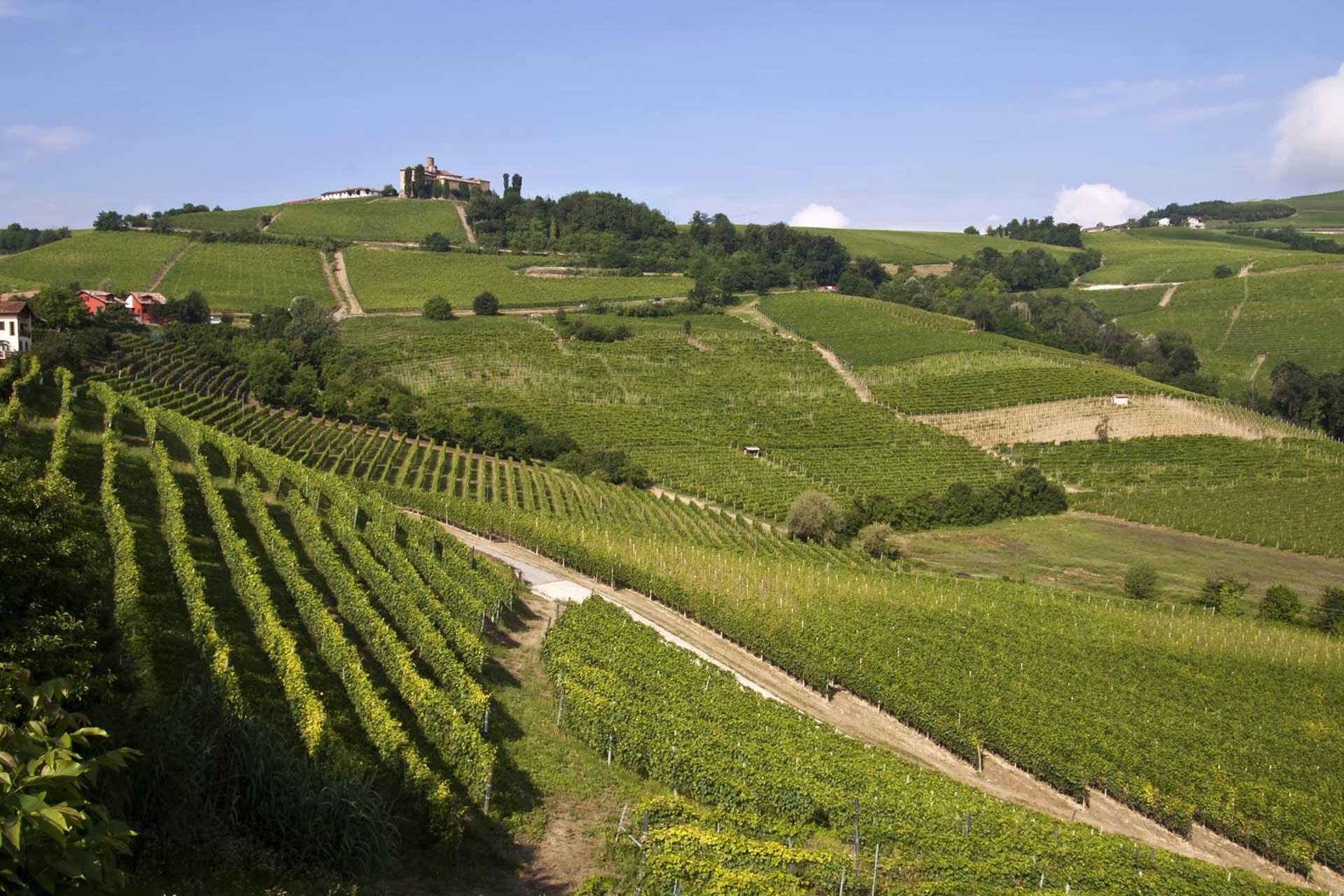 Langhe-e-monferrato